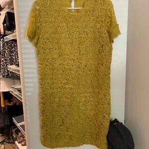Zara embroidered T-shirt dress